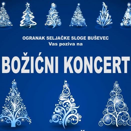 Božićni koncert u Buševcu